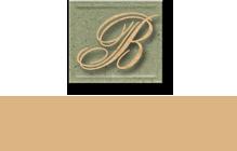 Carol Belz & Associates Logo